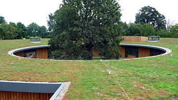 IKO Roofgarden 4 APP AD/F 7,5 m