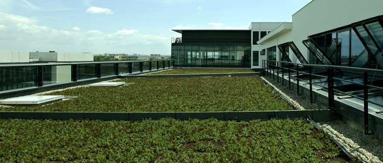 "Waterproofing membranes for ""Green"" roof"