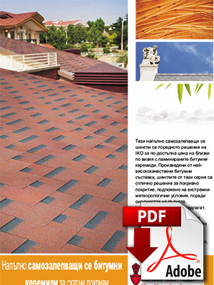 Design shingles brochure