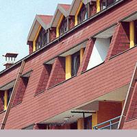 Покрив с битумни керемиди 529