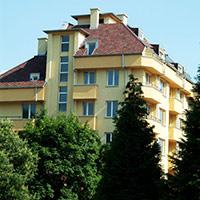 Покрив с битумни керемиди 483